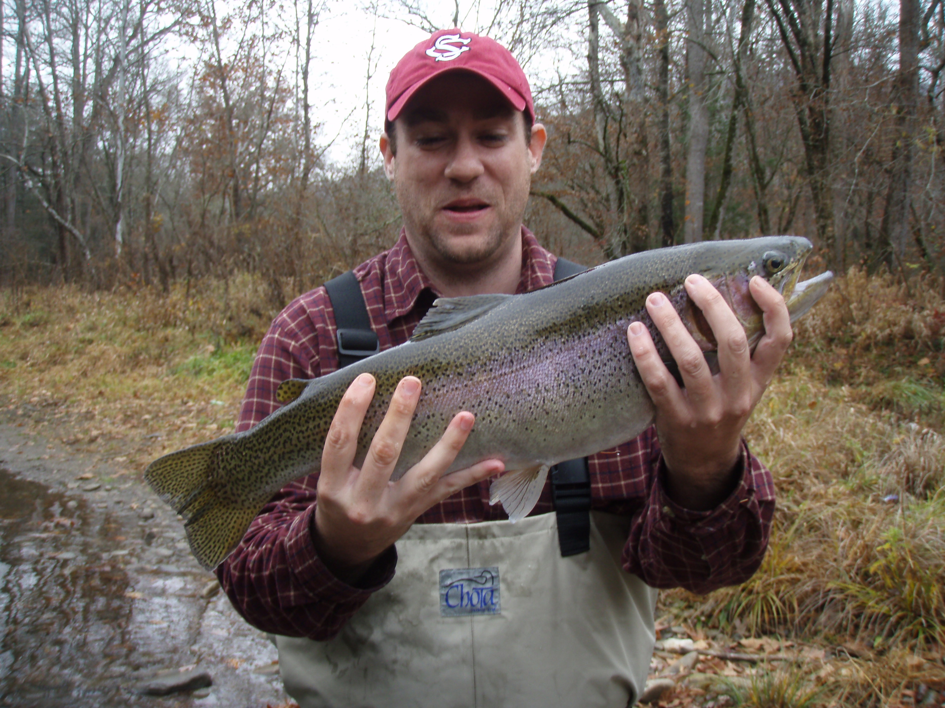 Trout fishing in cherokee nc hookers fly shop and guide for Fly fishing cherokee nc