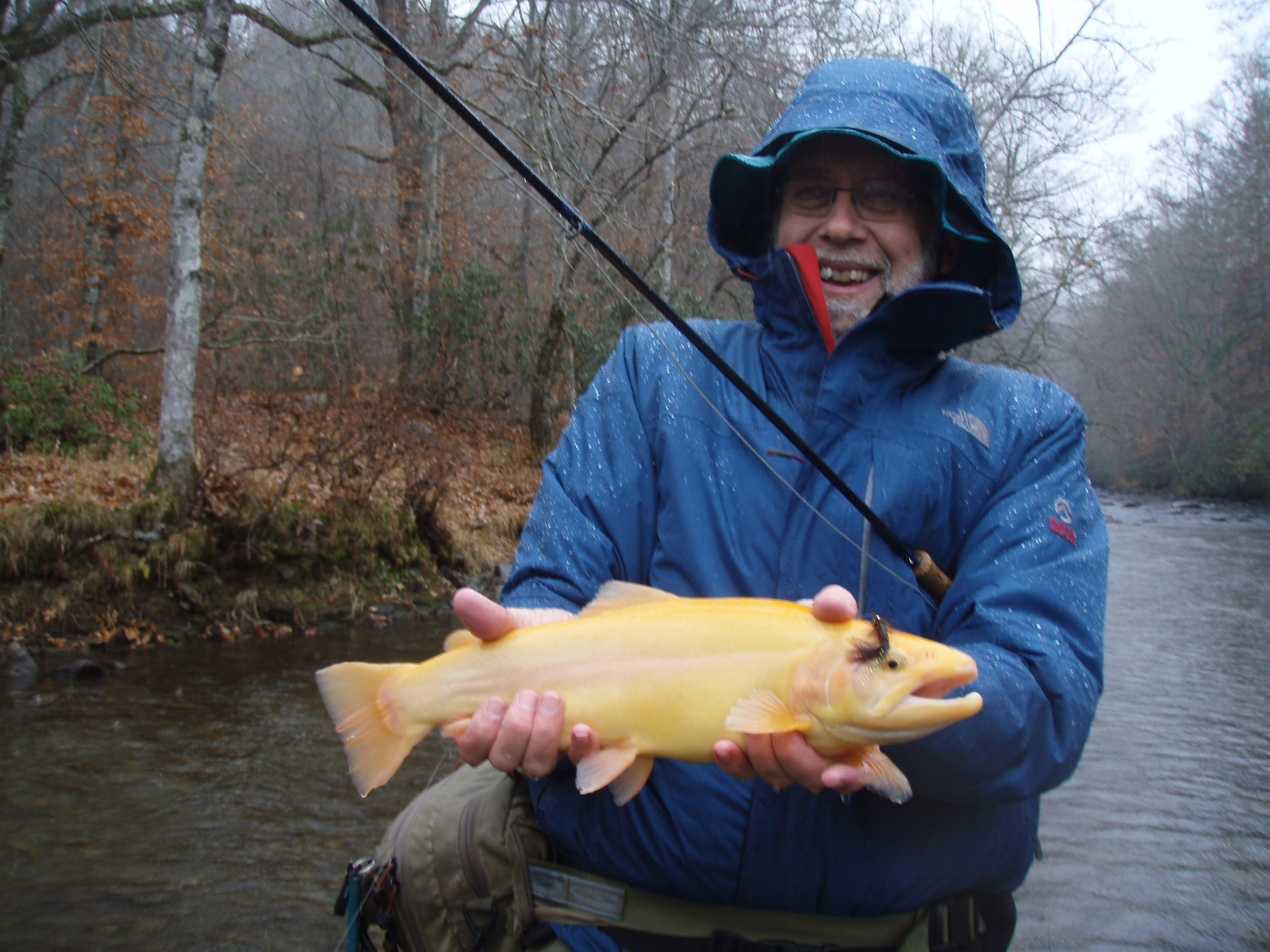 Discount fly fishing trips for western north carolina for Fly fishing cherokee nc