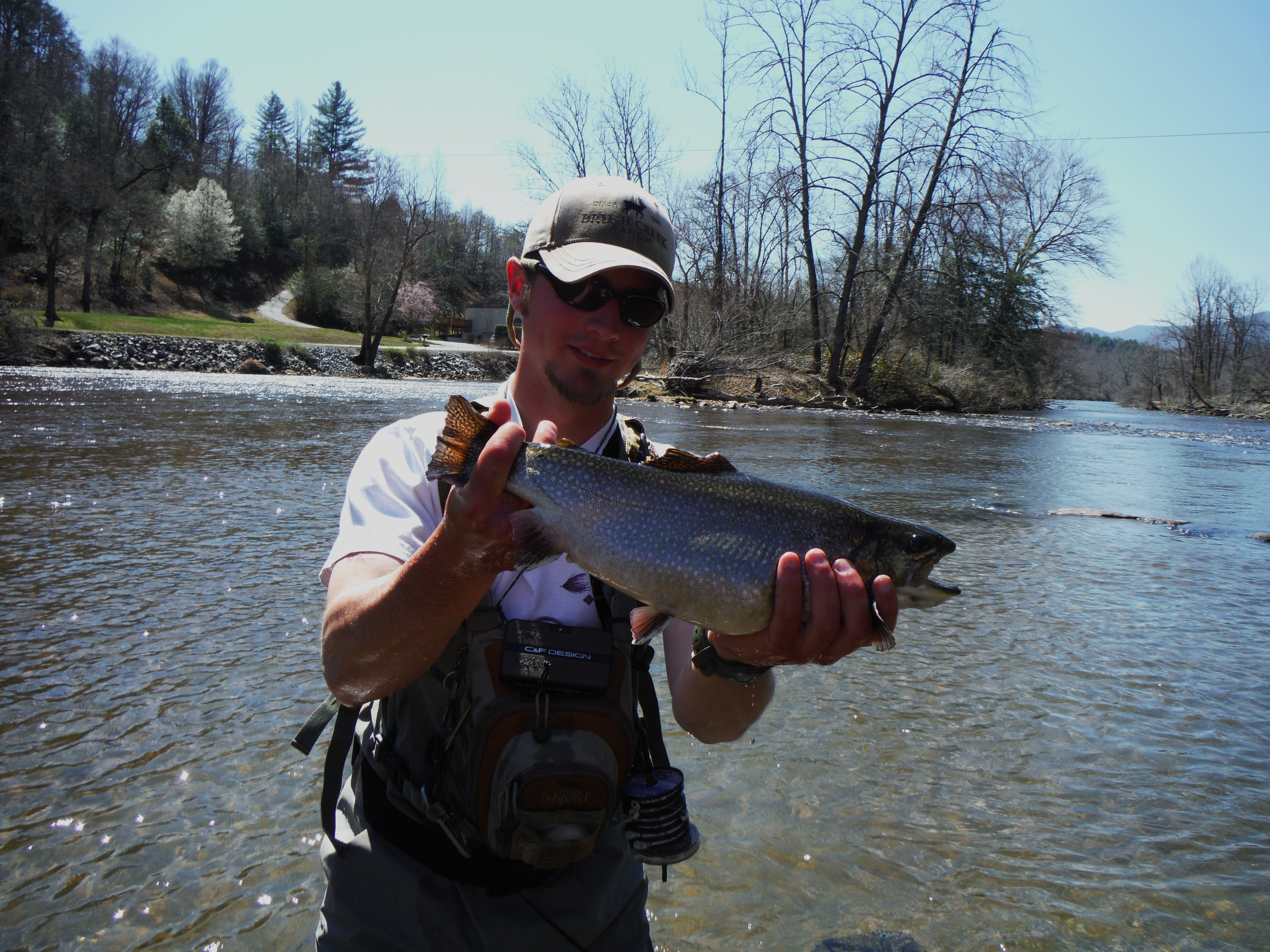 Fly fishing charters for western north carolina hookers for Fly fishing asheville nc
