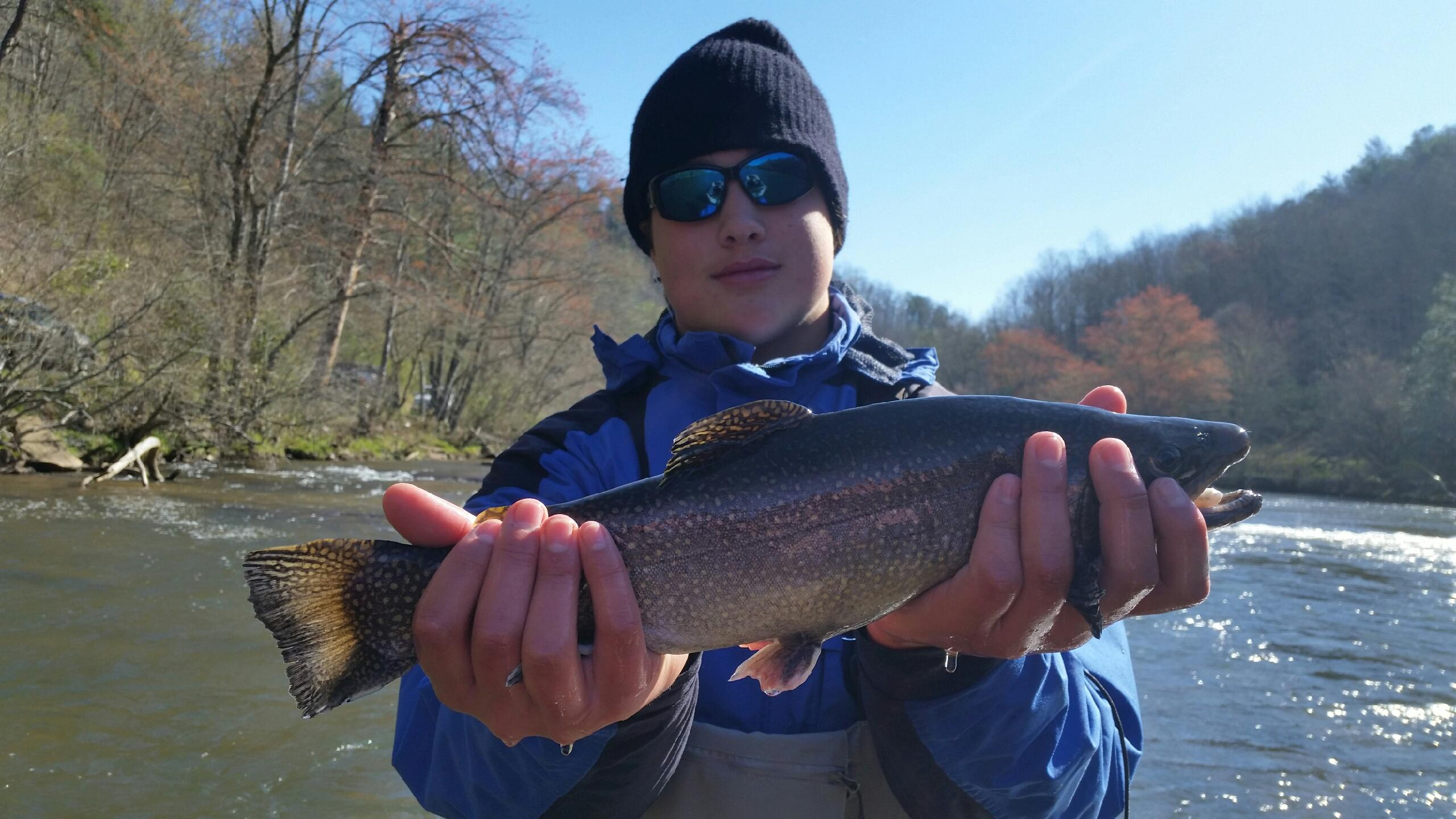 Fly fishing trips on the tuckasegee river hookers fly for Fly fishing vacation packages