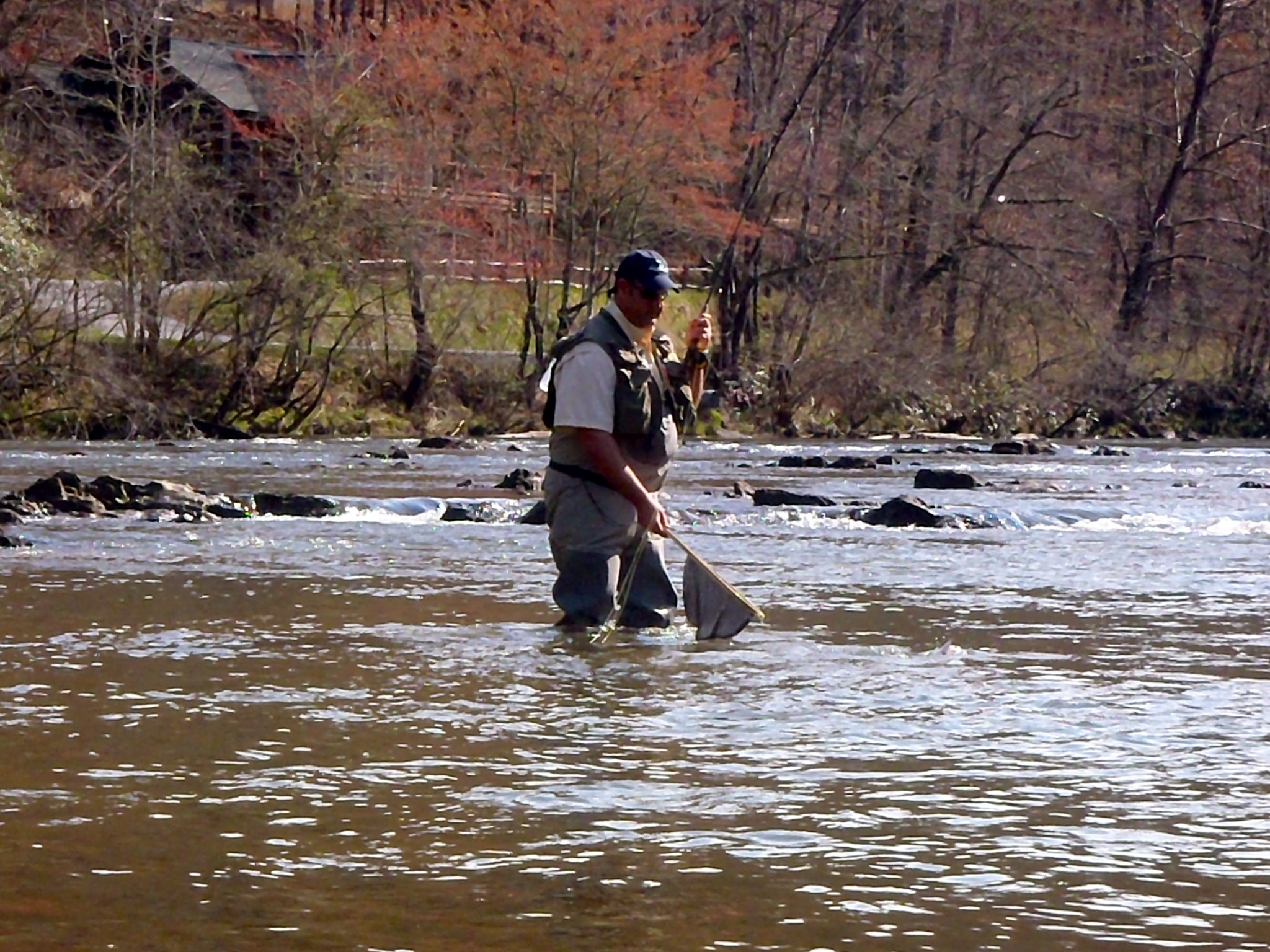 Fly fishing in western north carolina hookers fly shop for Fishing in asheville nc