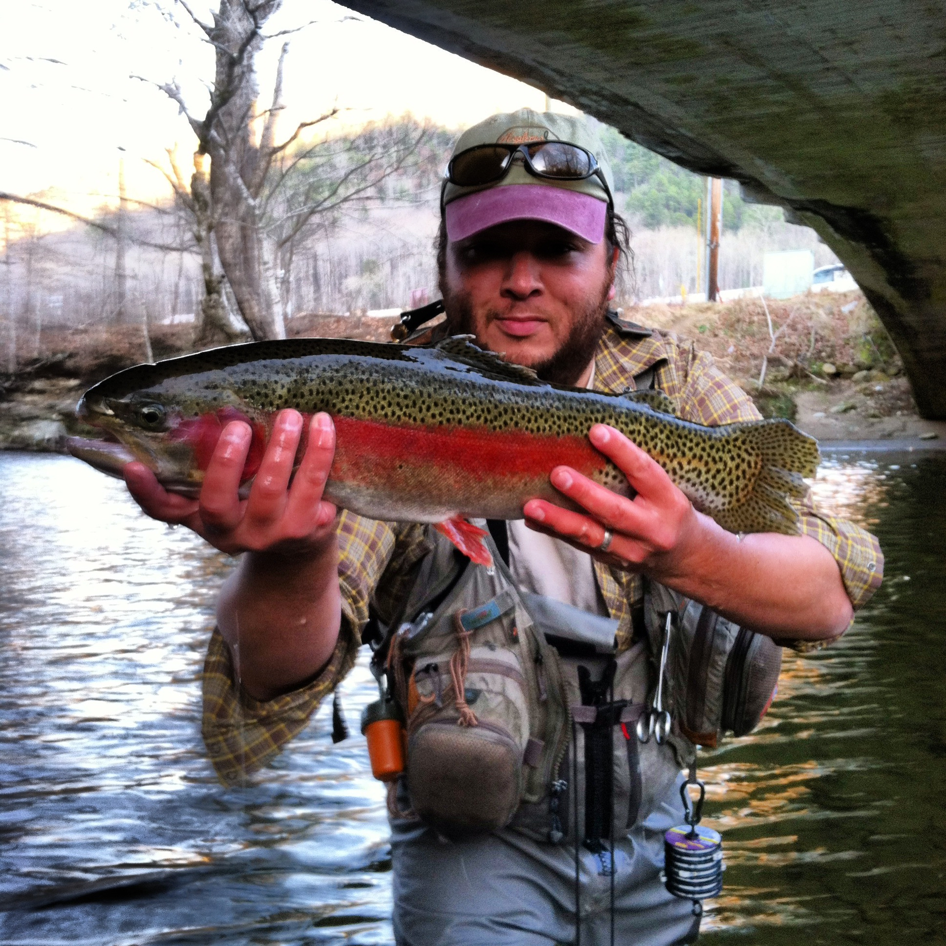 Fly fishing on the ravens fork trophy section hookers for Nc wildlife fishing license
