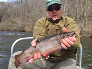 Tuckasegee River Fishing Report