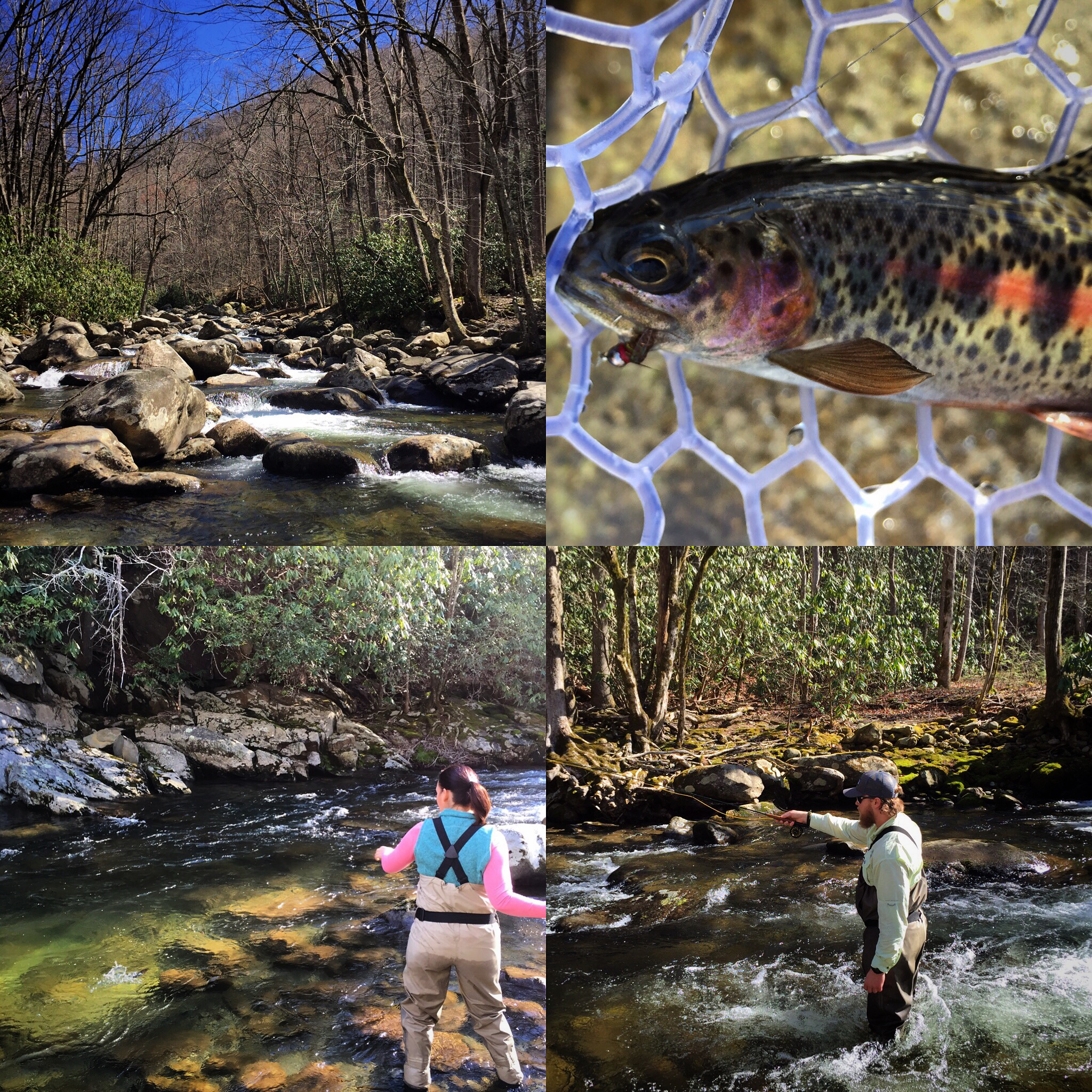 Fishing trips in western north carolina hookers fly shop for Fly fishing vacation packages
