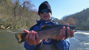 Fly fishing trips on the Tuckasegee River